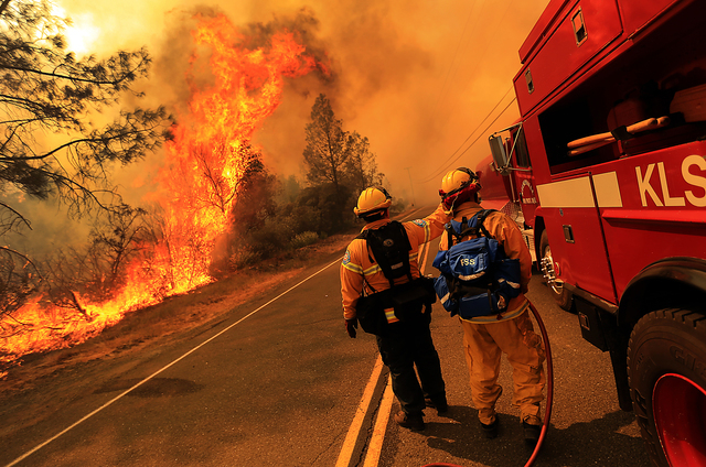 Kelseyville firefighters prepare to pull back from the fire on Butts Canyon Road as the fire jumps the road, Tuesday July, 1, 2014, outside Middletown, Calif., at the border between Lake and Napa  ...