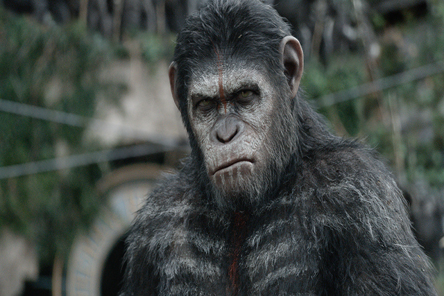 "This photo released by Twentieth Century Fox Film Corporation shows Andy Serkis as Caesar in a scene from the film, ""Dawn of the Planet of the Apes."" Hollywood stuntman Terry Notary play ..."
