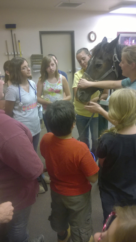 The short term 4-H Horse Science project, hosted by Desert Pines Equine Medical and Surgery Center for youth ages 9 to 18, has turned into the newest 4-H Club in Southern Nevada. Desert Pines vete ...