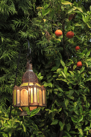 Ricardo DeAratanha/McClatch-Tribune News Medea A Moroccan hanging lamp among citrus in a garden. This type of lamp also could be hung indoors.
