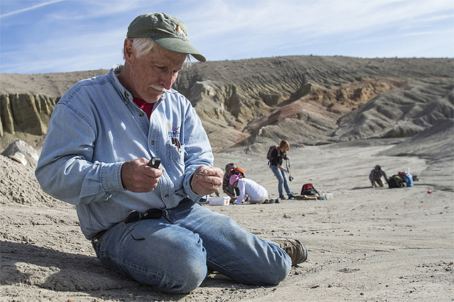 UNLV paleontologist Steve Rowland searches for fossils during a dig in Esmeralda in March. He just co-authored a paper on another discovery elsewhere in the county that could shed light on fossil  ...