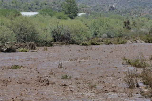 Turbid flash flood waters continue to overrun Skunk Creek, Tuesday, Aug. 19, 2014, in New River, Ariz., just northwest of Phoenix. (AP Photo/Matt York)