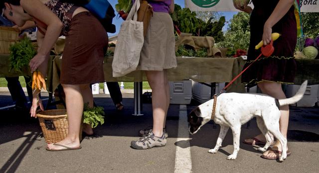 Shoppers pick through fresh produce at the Flagstaff Community Farmers Market in Flagstaff, Arizona, Sunday, July 12, 2009.  (JEFF SCHEID/LAS VEGAS REVIEW-JOURNAL)