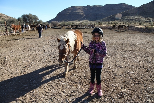 Hannah Newmaker walks a pony at a White Horse Youth Ranch activity. (Special to View)