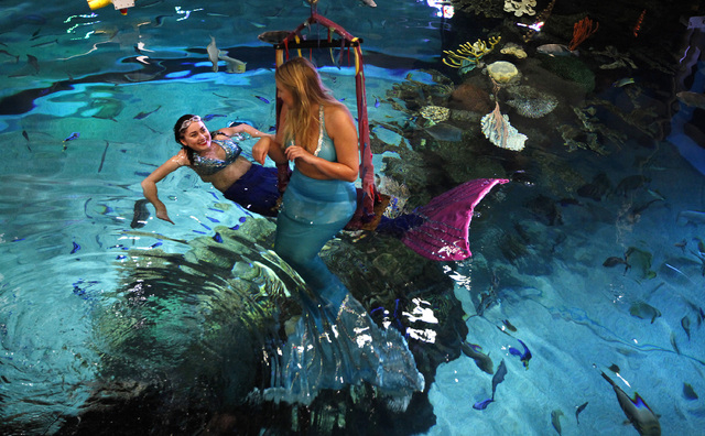 Logan Halverson, left, 20, and Kaitlyn Gilmore, prepare to perform as mermaids at The Aquarium. (Justin Yurkanin/View)