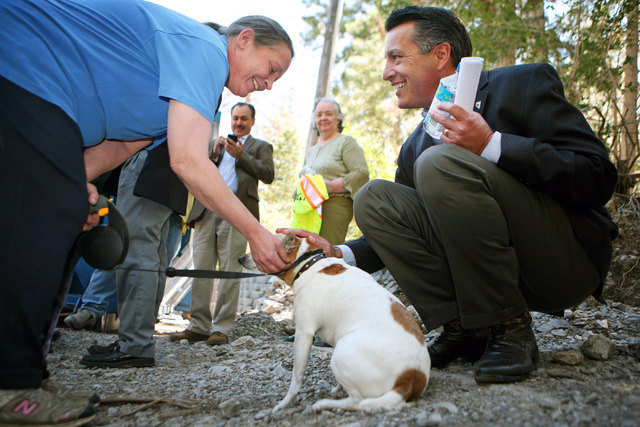 Gov. Brian Sandoval, right, visits with resident Terri Wade, left, and her dog, Blinky, after speaking at a news conference at the Rainbow Canyon subdivision at Mount Charleston Monday, Aug. 25, 2 ...