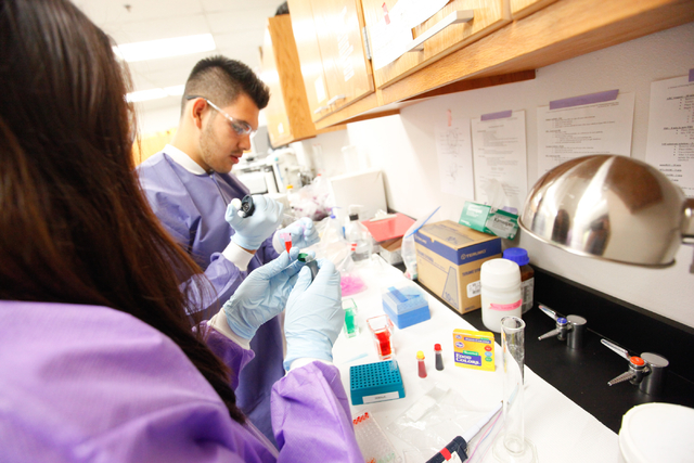 Heidi Kim, left, and Ulises Sanchez (cq) work with pipettes during the Science Summer Camp in the Rod Lee Bigelow Health Sciences building at UNLV on Wednesday, Aug. 6, 2014. The camp, led by Dr.  ...