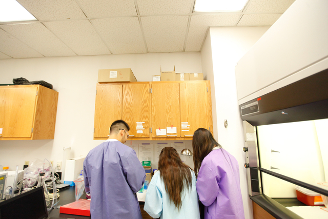 Students work with pipettes during the Science Summer Camp in the Rod Lee Bigelow Health Sciences building at UNLV on Wednesday, Aug. 6, 2014. The camp, led by Dr. Barbara St. Pierre Schneider, to ...