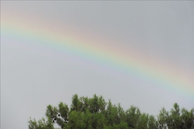 A rainbow is seen from Flamingo Road after Wednesday's storm. (Lucretia/submitted via At the Scene on the RJ app)