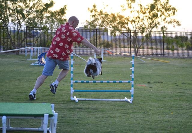 Kenneth Fazel runs his dog Oreo through an agility course hosted by Michael's Angel Paws. The organization plans one-hour dog agility classes at 10:30 a.m. Saturdays Sept. 13 through Oct. 18 at th ...
