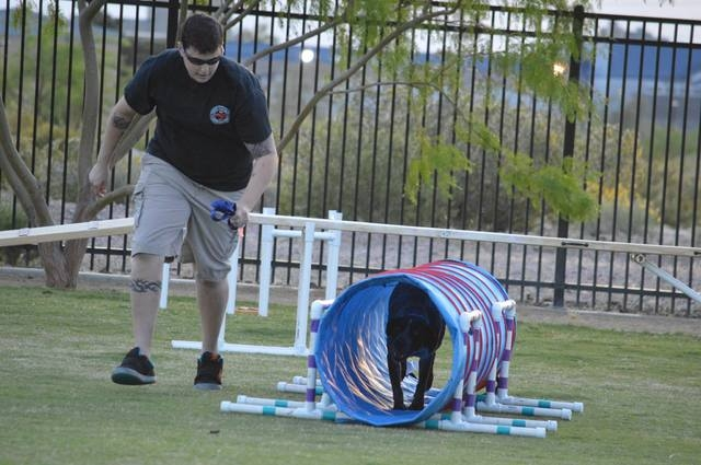 Shanea Johnson walks her dog Lucy through an agility course hosted by Michael's Angel Paws. The organization plans one-hour dog agility classes at 10:30 a.m. Saturdays from Sept. 13 to Oct. 18 at  ...