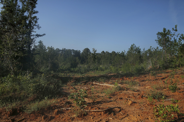 A dirt-filled area near the crime scene isfound on Wednesday, Sept. 10, 2014, in Camden, Ala. Timothy Ray Jones Jr. is expected to be charged with murder in the deaths of his five children after h ...