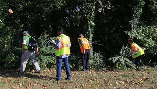 Volunteers search an area along Ivy Road Sunday, Sept. 21, 2014, during a massive search effort by the community to find missing UVa student Hannah Graham. (AP Photo/The Daily Progress, Andrew Shu ...