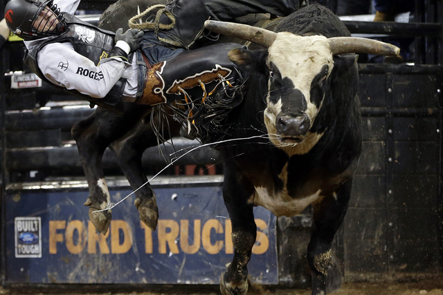 Markus Mariluch, of Nevada, slides off the bull Lightmaker's Rango during the seventh annual Professional Bull Riders Invitational finals at Madison Square Garden in New York, Sunday, Jan. 6, 2013 ...