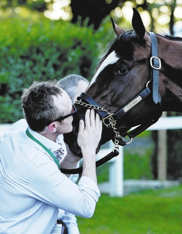 Exercise rider Lee Vickers kisses California Chrome after he finished fourth in the Belmont Stakes horse race, Saturday, June 7, 2014, in Elmont, N.Y. (AP Photo/Seth Wenig)