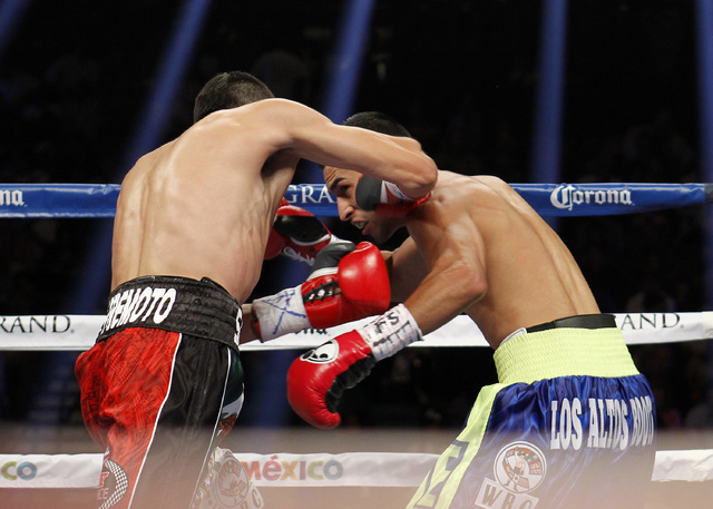 Leo Santa Cruz connects with Manuel Roman knocking him out in the second round of their WBC super bantamweight title fight at the MGM Grand Garden Arena in Las Vegas on Saturday, Sept. 13, 2014. ( ...