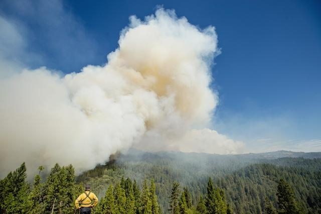 A firefighter watches the King Fire burn near Fresh Pond, California, Wednesday, Sept. 17, 2014. A California wildfire racing through the El Dorado National Forest had grown to threaten more than  ...