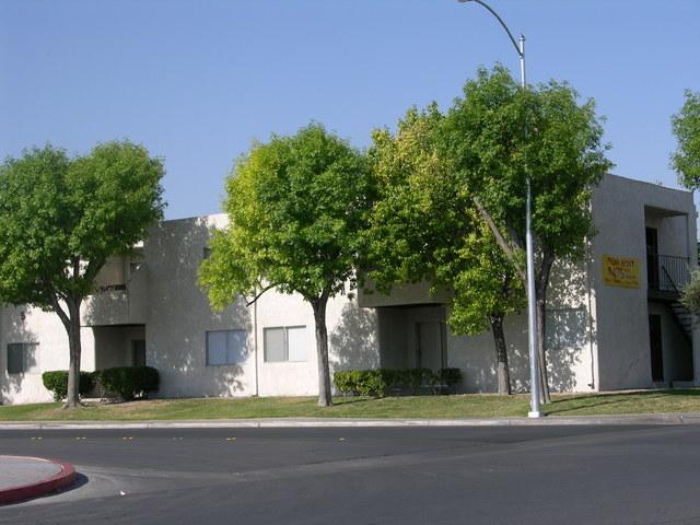 Ash trees do not fare well in the desert Southwest.  (Courtesy, Bob Morris)