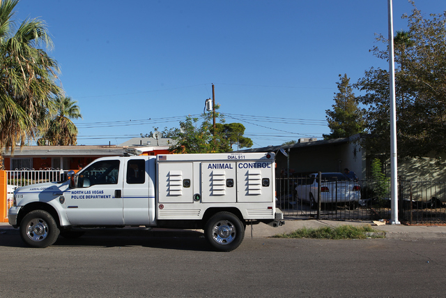 A North Las Vegas animal control vehicle is seen Monday, Sept. 29, 2014, at the home where 41 dogs died as the result of a fire Sunday night. The house is in the 2600 block of Stanley Avenue, near ...