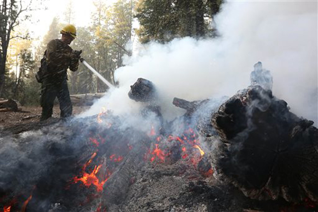 Firefighter Cameron Andersen, of the US Forest Service, pours water on burning embers while clearing hot spots of the King fire in the El Dorado National Forest near Georgetown, Calif., Thursday,  ...