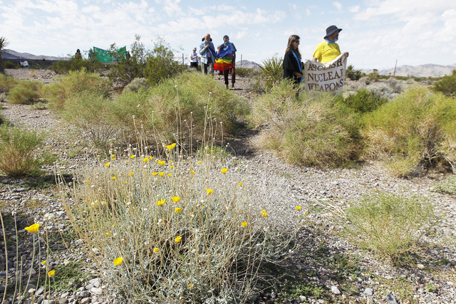 Anti-nuclear weapons demonstrators march through the brush toward the Nevada National Security Site during a civil disobedience action marking the United Nations International Day of Peace Sunday, ...