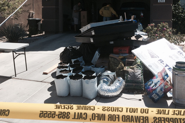 Las Vegas police are seen investigating the scene of a home where about 100 marijuana plants were confiscated on Thursday morning in the southeast valley. (Bizuayehu Tesfaye/Las Vegas Review-Journal)
