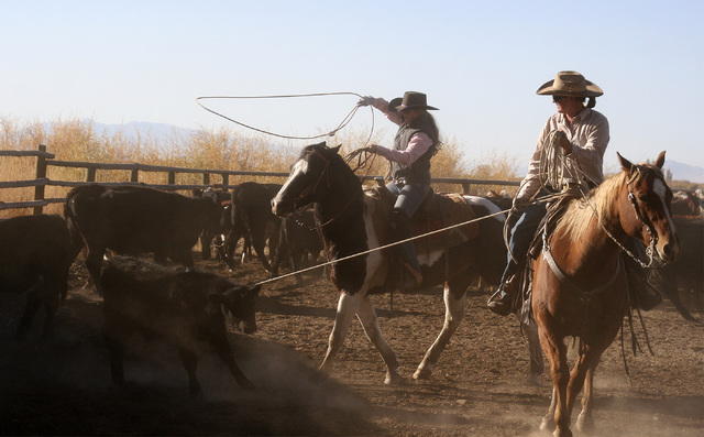 Patrice Stewart throwing a heel loop on a calf, while her Aunt Jhona Bell holds the head during a branding at Ninety-Six Ranch. (Courtesy Kris Stewart)