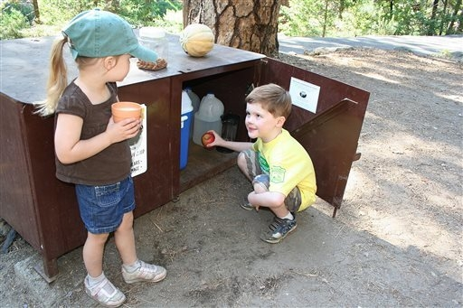 In this 2010 photo provided by the Yosemite Conservancy, children look inside a bear-proof food locker in Yosemite National Park, Calif. Keeping wild black bears in Yosemite National Park away fro ...