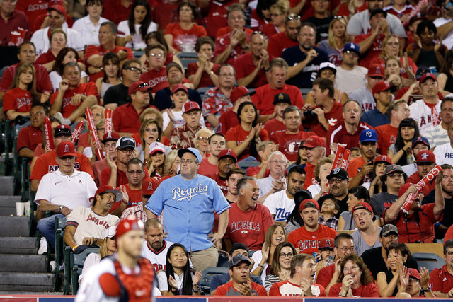 A lone Kansas City Royals fan stands with a section of Los Angeles Angels fans during Game 2 of baseball's AL Division Series in Anaheim, California, Friday, Oct. 3, 2014. A California man was bru ...