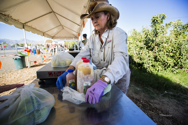Pamela Tuttle bags homemade apple cider at Gilcrease Orchard, 7800 N. Tenaya Way, on Thursday, Oct. 9, 2014. The cider is made from apples at the orchard.  (Jeff Scheid/Las Vegas Review-Journal)