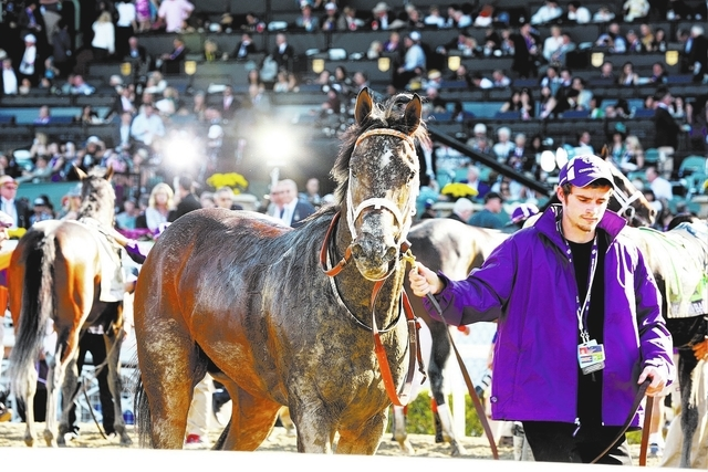 A view of atmosphere at the 30th Running of the Breeders' Cup World Championships Day 2, on Saturday, November 2, 2013 in Arcadia, Calif. (Photo by Alexandra Wyman/Invision for Breeders' Cup/AP Im ...