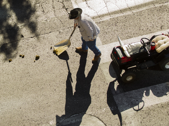 A man scoops up horse manure during the   Nevada Day Parade on Fourth Street in downtown Las Vegas on Friday, Oct. 31. Thousands lined the street to celebrate Nevada's  Sesquicentennial. (Jeff Sch ...