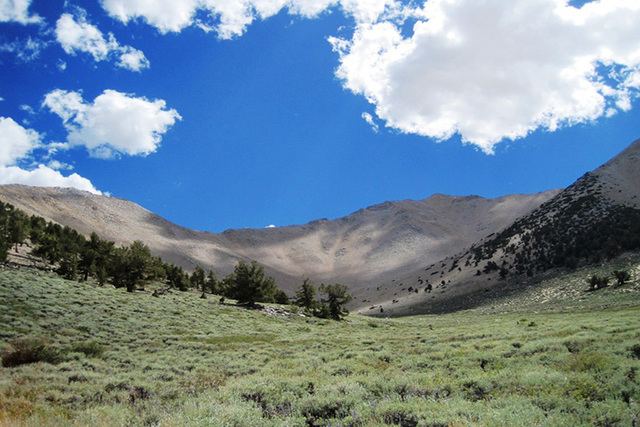 Boundary Peak as seen the Trail Canyon side. At 13,140 feet, it is Nevada highest point, though overshadowed by nearby peaks on the California side of the border. The peak was part of California b ...