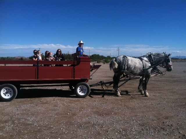 A horse-drawn wagon is seen at Floyd Lamb Park at Tule Springs, 9200 Tule Springs Road in Las Vegas, Oct. 2014. Harvest Days at Tule Springs is set from 2 to 5 p.m. weekdays and 10 a.m. to 5 p.m.  ...