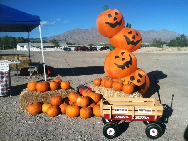 Pumpkins are seen at Floyd Lamb Park at Tule Springs, 9200 Tule Springs Road in Las Vegas, Oct. 2014. Harvest Days at Tule Springs is set from 2 to 5 p.m. weekdays and 10 a.m. to 5 p.m. weekends t ...