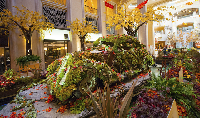 The floral and horticulture team at The Venetian and the Palazzo recently received the 2014 Diamond Plantscape Award from the Plantscape Institute of America for the 2013 Fall Into ECO 360° insta ...