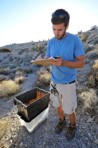 Desert Tortoise Conservation Center worker Troy Hughes takes notes after releasing a desert tortoise into the desert near Primm on Friday, Oct. 10, 2014. The Conservation Center which was establis ...