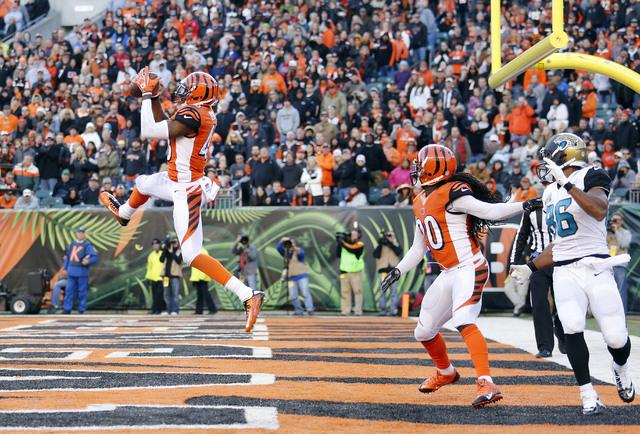 Nov 2, 2014; Cincinnati, OH, USA; Cincinnati Bengals safety George Iloka (43) intercepts the ball during the game against the Jacksonville Jaguars in the second half at Paul Brown Stadium. Cincinn ...