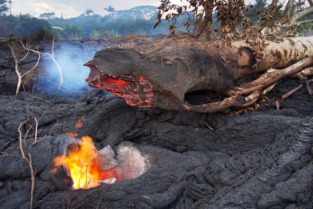 This photo taken on Oct. 31, 2014, and released by the U.S. Geological Survey, shows a hole left behind by a large tree that was surrounded by lava, burned through at its base and collapsed onto t ...
