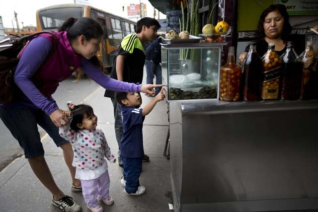 A mother shows her children frogs in a fish tank used as an ingredient at a juice stand in Lima, Peru, Monday, Nov. 17, 2014. Most of the customers are from an area that borders Bolivia, where the ...