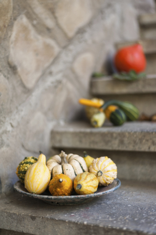 Thinkstock Gourds of various colors can be used for fall outdoor decor.