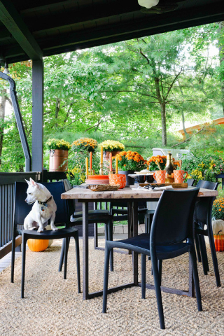 Rustic White Photography/The Associated Press An outdoor dining room by Brian Patrick Flynn showcases the designer's love of hosting Thanksgiving outdoors. Flynn suggests setting up a table for 10 ...