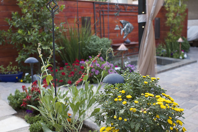 "Photo by Koryne Smith Local landscaper Mat Baroudi showed the ""Ask This Old House"" team a recent backyard conversion, in which colorful groups of flowers were incorporated in the water-saving outd ..."