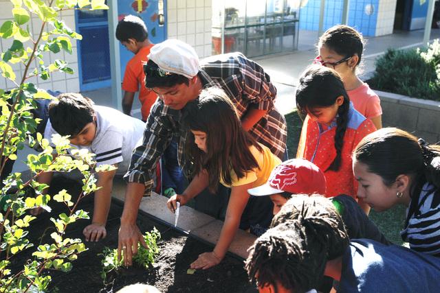 Kaleb Hoeffgen from Garden Farms of Nevada helps students plant vegetables at Walter Bracken STEAM Academy's garden. (Sam Morris/View)