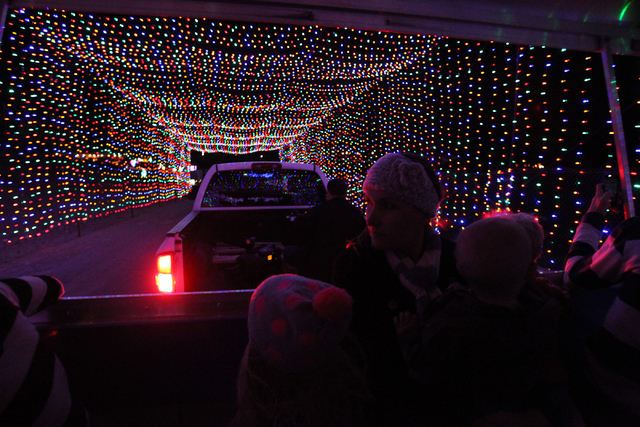 people ride on a trailer during an unveiling of glittering lights holiday drive through spectacular