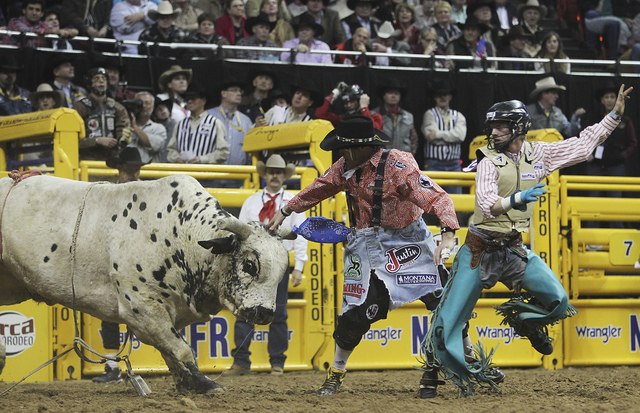 Bullfighter Dusty Tuckness protects Brett Stall after his winning ride during round 7 of the Wrangler National Finals Rodeo at the Thomas & Mack Center in Las Vegas, Dec. 12, 2012. (Jason Bean/Las ...