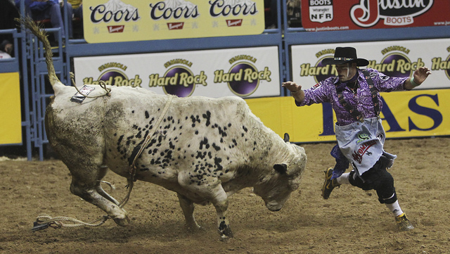 Bullfighter Dusty Tuckness runs for his life during the first go around of the Wrangler National Finals Rodeo at the Thomas & Mack Center in Las Vegas on Dec. 6, 2012. (Jason Bean/Las Vegas Review ...