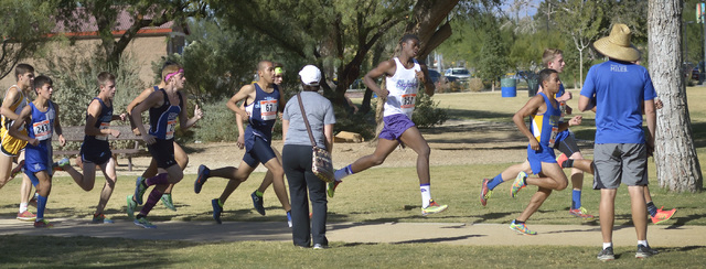 Runners compete in the Division I boys state cross country meet at Sunset Park at Sunset Road and Eastern Avenue in Las Vegas on Saturday, Nov. 8, 2014. (Bill Hughes/Las Vegas Review-Journal)