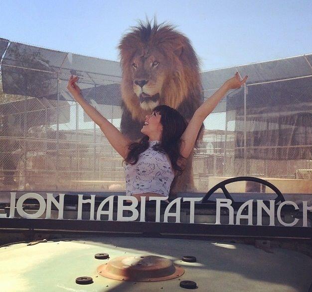 Claire Sinclair at the Lion Habitat Ranch (Courtesy)