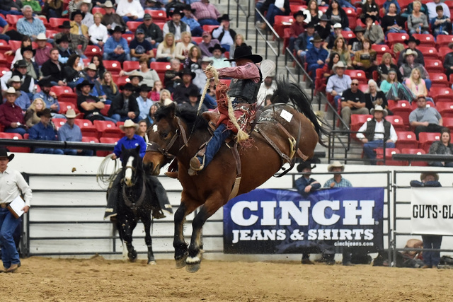 A bucking horse named Sonora participates in the World Bucking Futurity Finale at South Point this month while the NFR was in town. (Courtesy/Dale Miller)